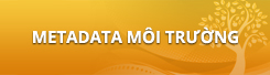 Metadata môi trường